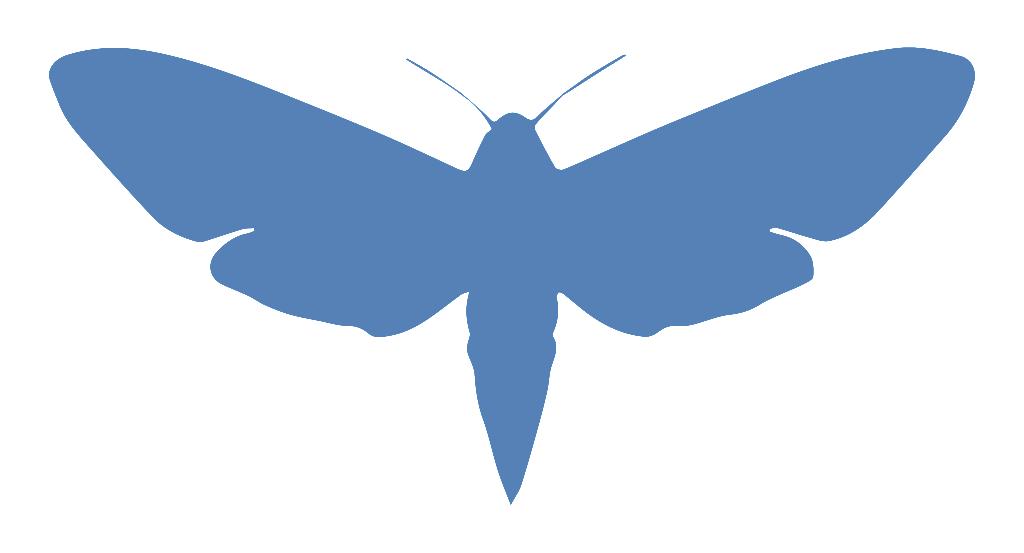moth_logo_300x150 v2